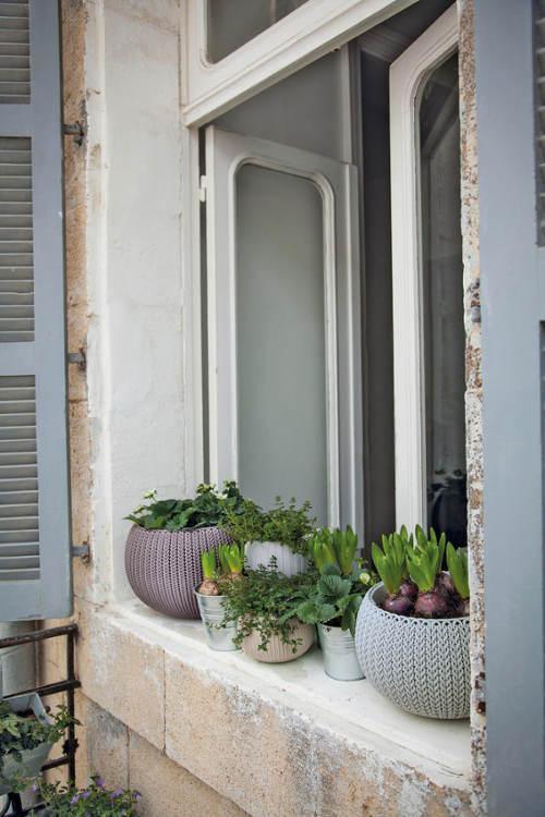 Dekorativní květináče na okno