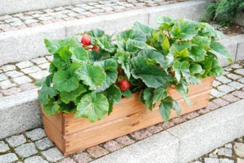 Dřevěný truhlík na jahody