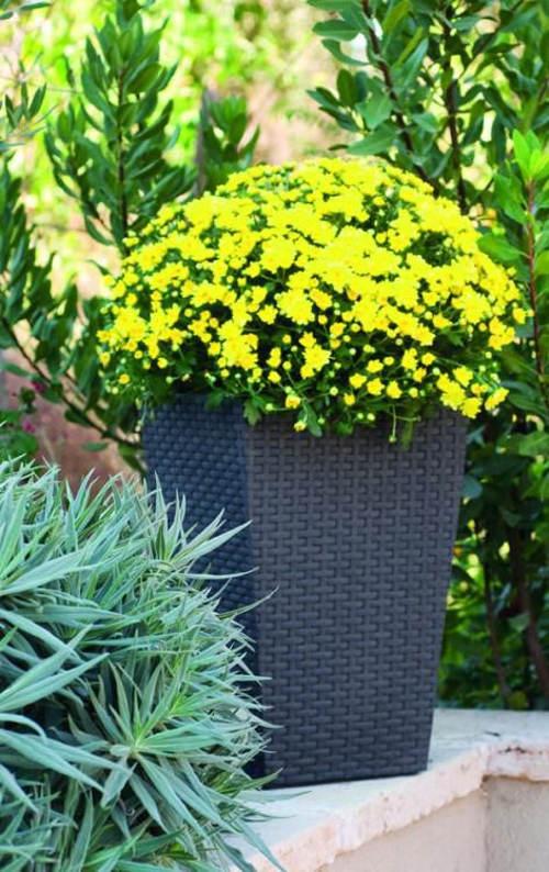 Květináč na zahradu ratanového vzhledu