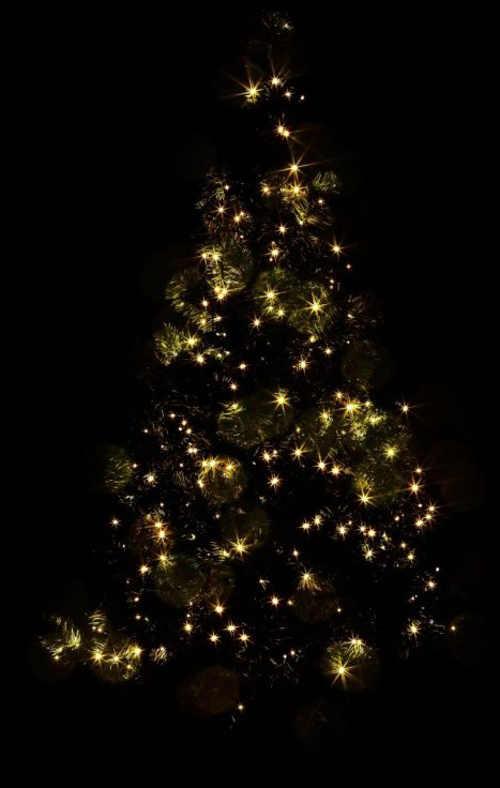 Dlouhý řetěz na osvětlení vánočního stromku na zahradě