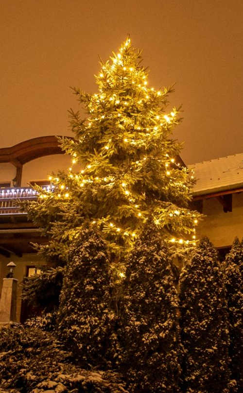 Svítící řetěz na vánoční strom na zahradě