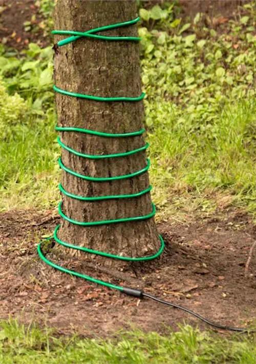 Levný topný kabel pro ochranu stromů před mrazem