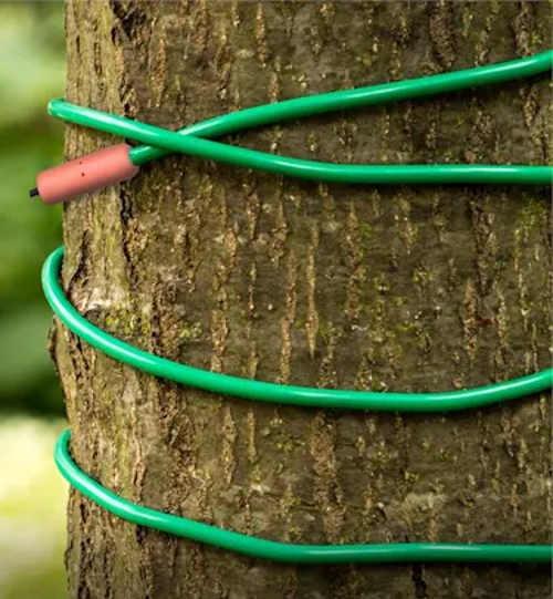 Topný kabel ochrání rostliny v zahradě před mrazem