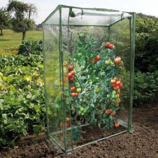 Speciální fóliovník na rajčata